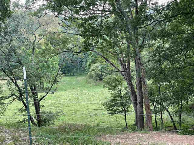 0 Partin Road, Cleveland, GA 30528 (MLS #9067283) :: Statesboro Real Estate