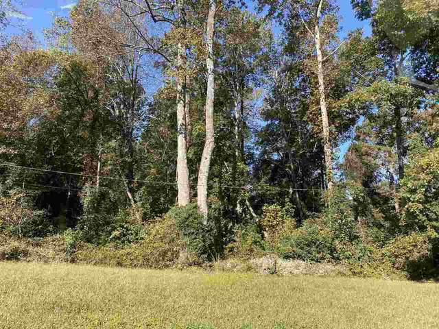 133 Central Lake, Griffin, GA 30223 (MLS #9067454) :: Maximum One Partners
