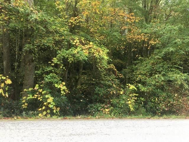 0 Bald Mountain Lot 11 Midwoods, Sky Valley, GA 30537 (MLS #9067589) :: Statesboro Real Estate