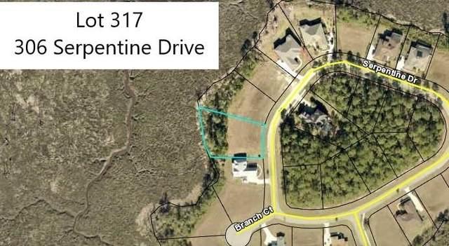 306 Serpentine Drive #317, St. Marys, GA 31558 (MLS #9067716) :: The Huffaker Group
