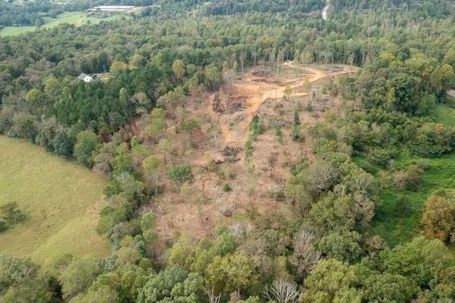 0 Raccoon Lane, Mount Airy, GA 30563 (MLS #9067882) :: Statesboro Real Estate