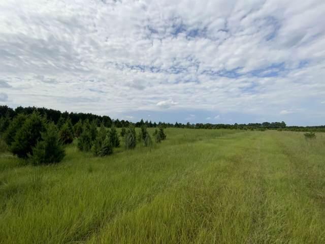 0 Cordele Highway, Hawkinsville, GA 31036 (MLS #9067909) :: Statesboro Real Estate