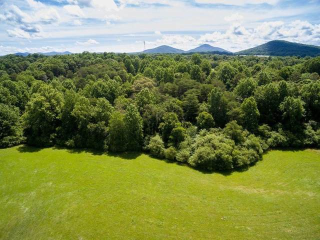 520 Grindle Brothers Rd (Tract 2), Murrayville, GA 30564 (MLS #9067947) :: Statesboro Real Estate