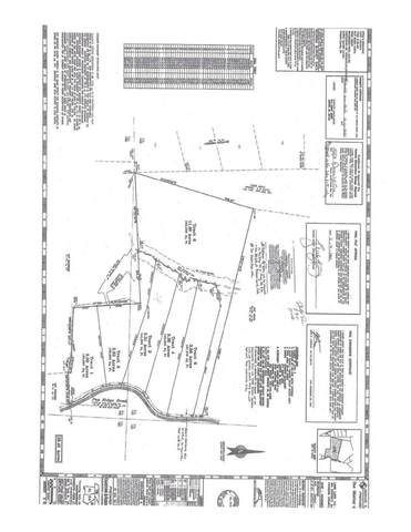 0 Pea Ridge Road Lot 1, Ball Ground, GA 30107 (MLS #9068217) :: Athens Georgia Homes