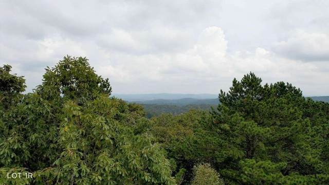 0 Whispering Pines, Ranger, GA 30734 (MLS #9068313) :: HergGroup Atlanta