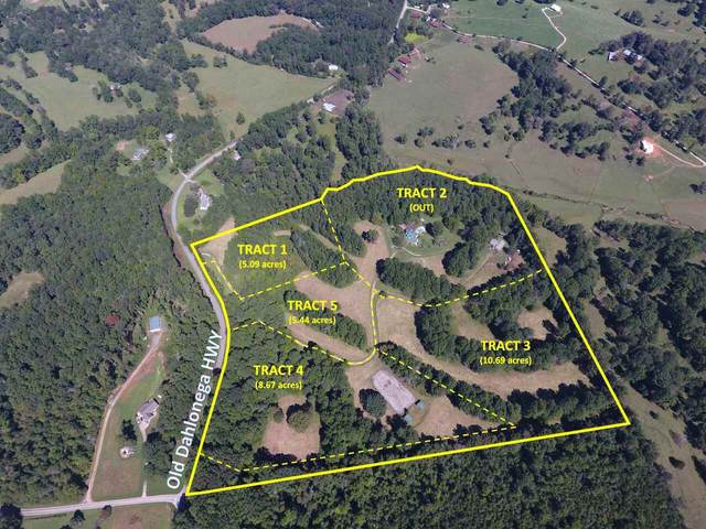 6526 Old Dahlonega Highway Lot 4 (Of 5 Lot, Dahlonega, GA 30533 (MLS #9068387) :: Statesboro Real Estate