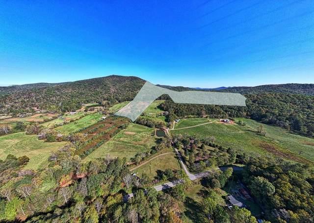 0 Old Skeenah Gap Road 50 AC, Suches, GA 30572 (MLS #9068453) :: Rettro Group