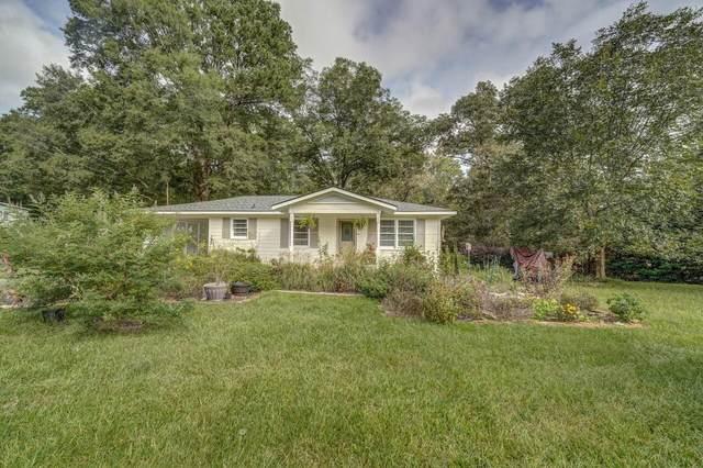 2896 Fairview Road, Covington, GA 30016 (MLS #9068599) :: Anderson & Associates