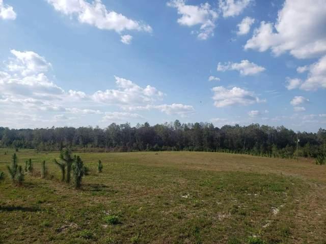 0 David Carter Road, Baxley, GA 31513 (MLS #9068620) :: Statesboro Real Estate