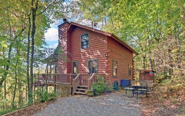 247 Hickory Nut Trail, Cherry Log, GA 30522 (MLS #9069230) :: Regent Realty Company