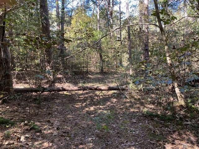 172 Currahee Point, Toccoa, GA 30577 (MLS #9070061) :: Scott Fine Homes at Keller Williams First Atlanta