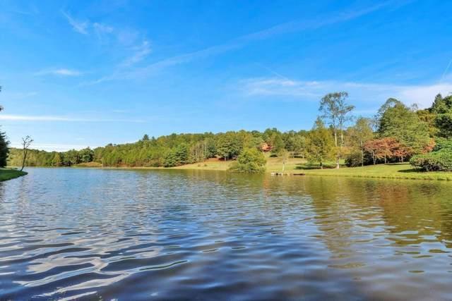 46 Living Water Drive 46,47, Mccaysville, GA 30555 (MLS #9070970) :: Regent Realty Company