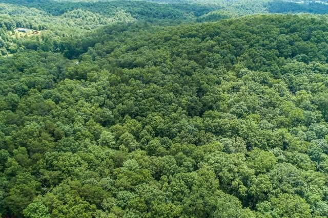 0 Blue Arrow Lane, Mineral Bluff, GA 30559 (MLS #9071171) :: Regent Realty Company
