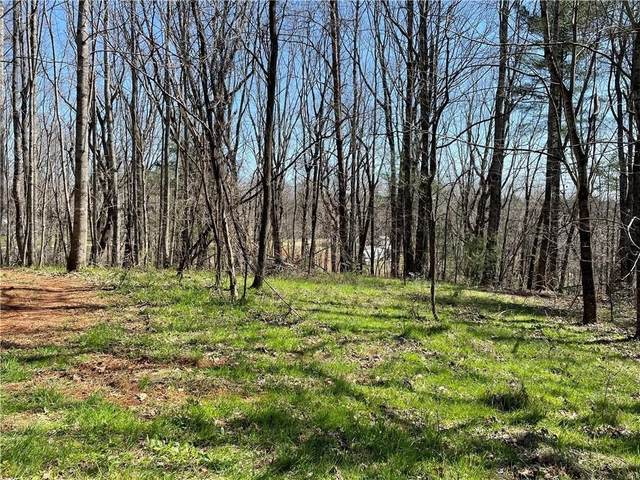 8 Old Driver Road, Whitesburg, GA 30185 (MLS #9071826) :: Virtual Properties Realty | The Tracy Prepetit Team
