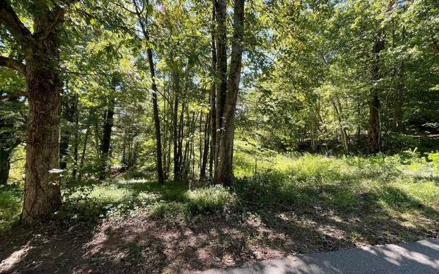 LOT 1 Buena Vista Drive, Hayesville, NC 28904 (MLS #9072816) :: Michelle Humes Group