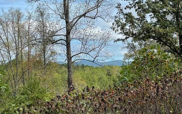 33 Pleasant Meadows, Blairsville, GA 30512 (MLS #9072874) :: Morgan Reed Realty