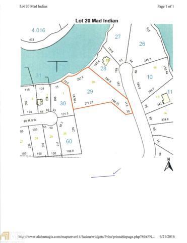 20 Indian Creek E, Wedowee, AL 36278 (MLS #8038496) :: Anderson & Associates