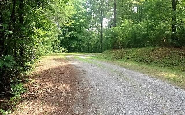 0 Willow Ridge Tr9 Lot 5, Warne, NC 28909 (MLS #8366508) :: Team Cozart
