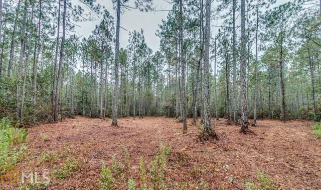 0 Mud Rd, Brooklet, GA 30415 (MLS #8484756) :: RE/MAX Eagle Creek Realty