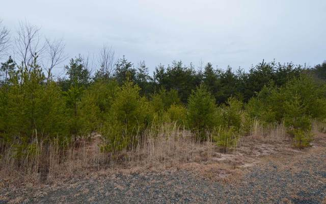 0 Preserve At Beach Mtn #2, Hayesville, NC 28904 (MLS #8529811) :: Military Realty