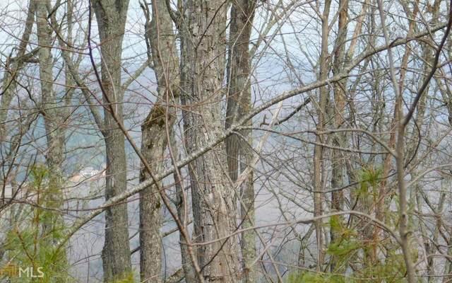 0 Deer Valley Lot 28, Warne, NC 28909 (MLS #8561496) :: Rettro Group
