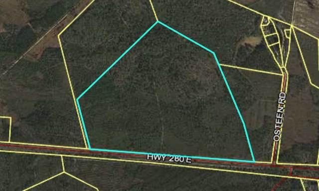 10 E Highway 280, Pembroke, GA 31321 (MLS #8576470) :: AF Realty Group