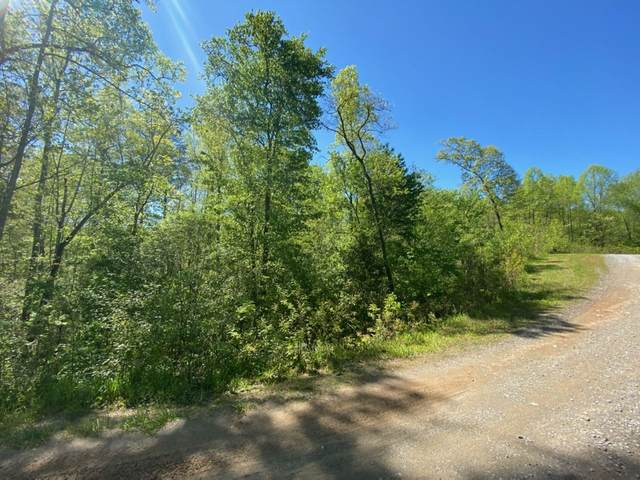 Lot 60 Staurolite Mountain #60, Blue Ridge, GA 30513 (MLS #8790015) :: Team Cozart