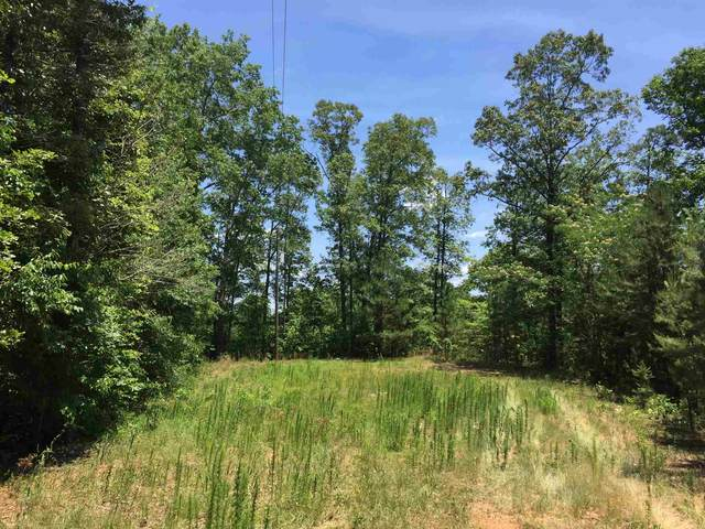 0 Pointe South Dr Lot 54, Wedowee, AL 36278 (MLS #8815036) :: Rettro Group