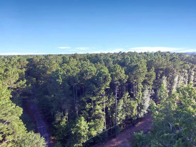 0 Burkhalter Rd Lot 7, Statesboro, GA 30458 (MLS #8821300) :: Better Homes and Gardens Real Estate Executive Partners