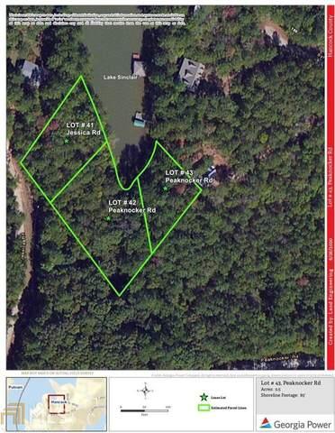 0 Peaknocker Road Lot 43, Sparta, GA 31087 (MLS #8830457) :: Crown Realty Group
