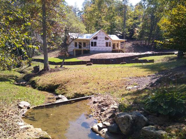 0 Staurolite Mountain Lt 53, Blue Ridge, GA 30513 (MLS #8870301) :: Team Cozart