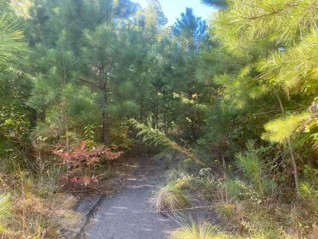 0 Harris Creek Dr, Ellijay, GA 30540 (MLS #8870851) :: Crown Realty Group