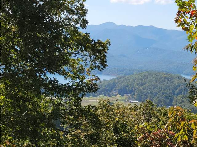 0 Broken Arrow Trl Lt51a, Hayesville, NC 28904 (MLS #8875052) :: AF Realty Group
