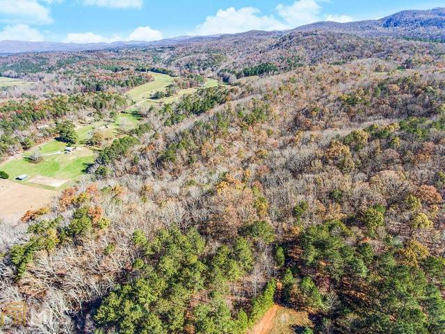 0 North Dean Trl Tract C, Ellijay, GA 30540 (MLS #8893210) :: Athens Georgia Homes