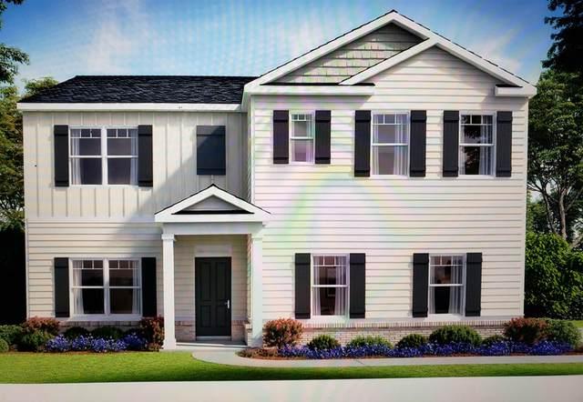 204 Cranapple Ln, Mcdonough, GA 30253 (MLS #8894690) :: Amy & Company | Southside Realtors