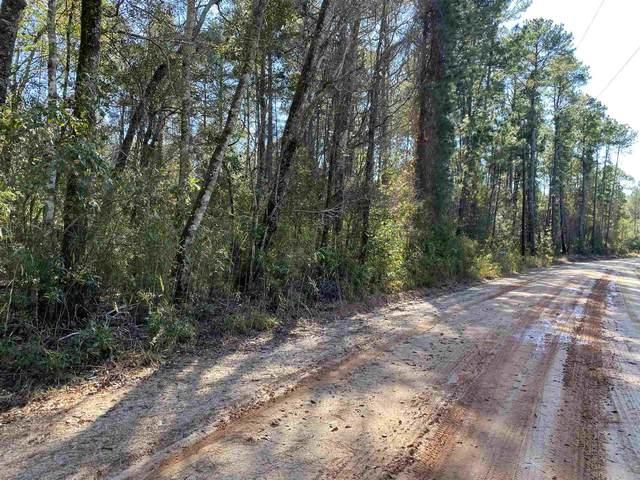 0 Doe Run Rd, Brooklet, GA 30415 (MLS #8901174) :: RE/MAX Eagle Creek Realty