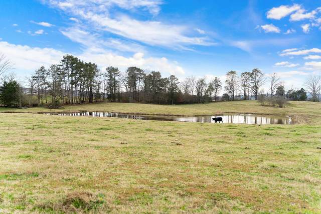 5800 W Armuchee Rd, Summerville, GA 30747 (MLS #8905027) :: Buffington Real Estate Group