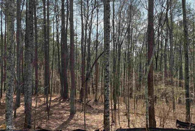 0 Sunset Cv Lot 63, Ellijay, GA 30536 (MLS #8949545) :: AF Realty Group