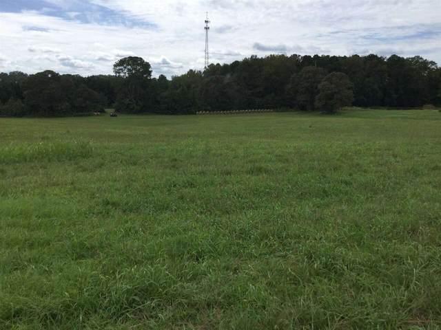 0 Woods Road Tract 2A, Brooks, GA 30205 (MLS #8949750) :: Anderson & Associates