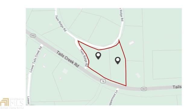 16 17 Twin Ridge Road, Ellijay, GA 30540 (MLS #8975152) :: Athens Georgia Homes
