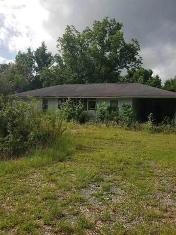 1035 Brooks Road, Ideal, GA 31041 (MLS #8975704) :: Statesboro Real Estate