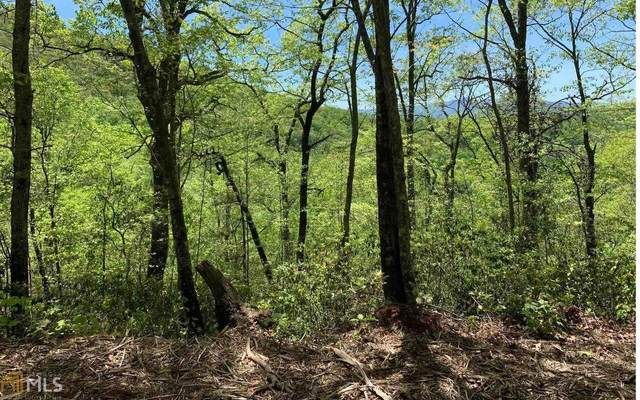 0 Winchester Cove Lot 22B, Hayesville, NC 28904 (MLS #8997085) :: Athens Georgia Homes