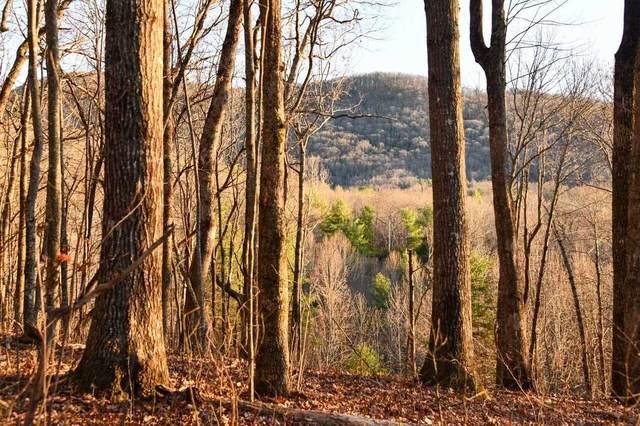 0 Bald Mountain Road #53, Dillard, GA 30537 (MLS #9004238) :: Crown Realty Group