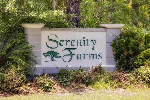 0 Serenity Farms Road Lots 16 & 17, Woodbine, GA 31569 (MLS #9005094) :: Athens Georgia Homes