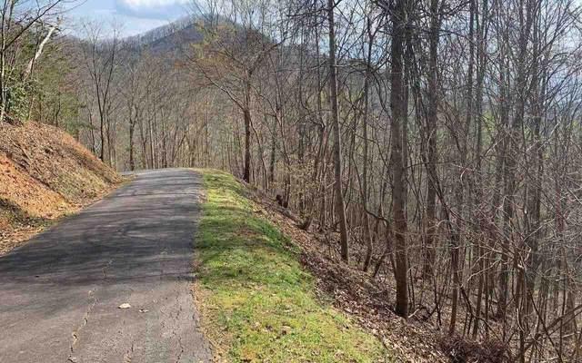 0 High Meadows Lot 11, Hayesville, NC 28904 (MLS #9009411) :: Athens Georgia Homes