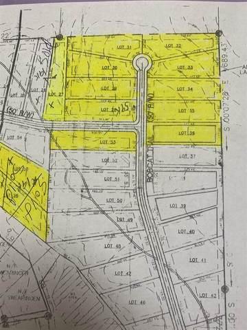 0 Panther Woods Drive Lots 28, 29, Jackson, GA 30233 (MLS #9010886) :: Maximum One Realtor Partners