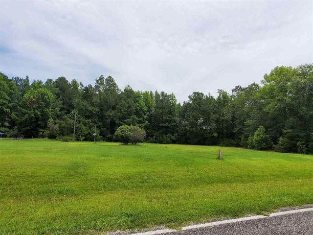 876 Savannah Town Road, Springfield, GA 31329 (MLS #9013271) :: Rettro Group