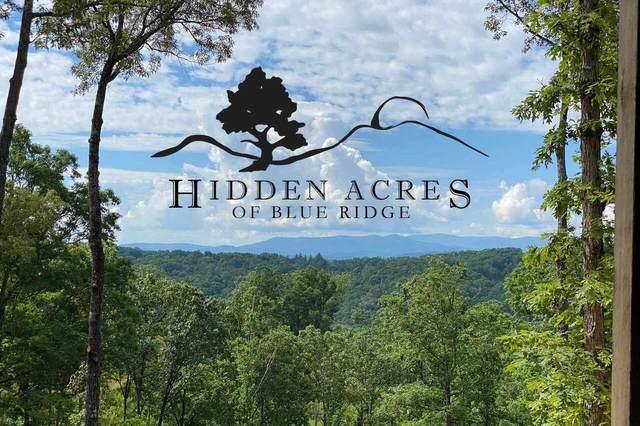 0 Hidden Acres Lt 3, Blue Ridge, GA 30513 (MLS #9013695) :: Athens Georgia Homes