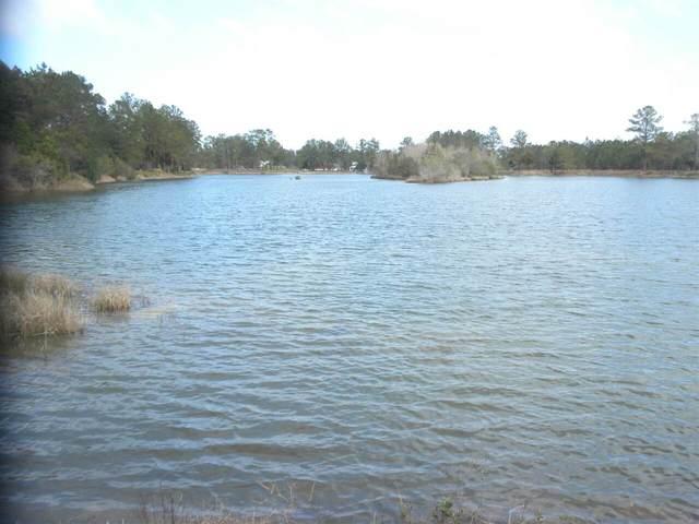 0 Janells River Drive Lot 31, Folkston, GA 31537 (MLS #9015904) :: Maximum One Realtor Partners