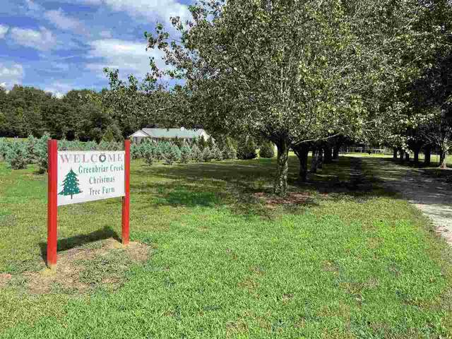 1540 Old Bishop Road, Bishop, GA 30621 (MLS #9020110) :: Anderson & Associates